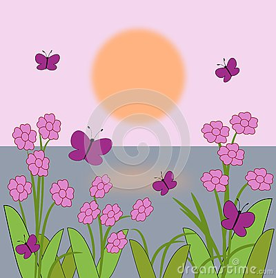 Flowers and Butterflies   in the Sunrise