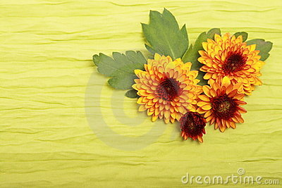 Flowers on cloth