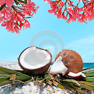 Flowers and coconuts