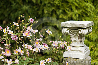 Flowers and column capital