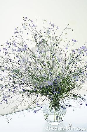 Flowers in contemporary interior design
