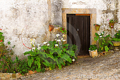 Flowers at doorway