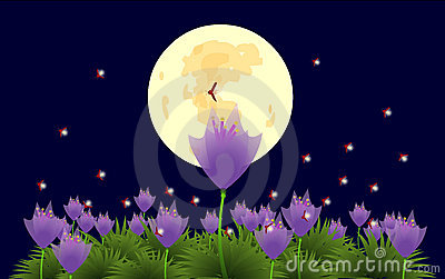 Flowers and fireflies under the moonlight-illustra
