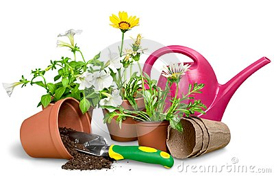 Gardening Equipment and flowers isolated on white Stock Photo