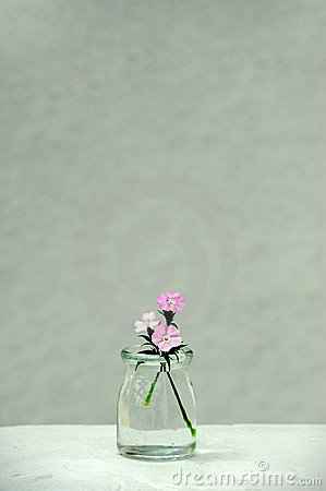 Flowers in a glass bottle