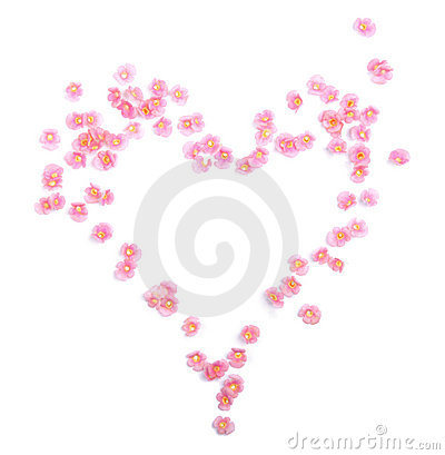 Free Flowers Heart Stock Photo - 15532090