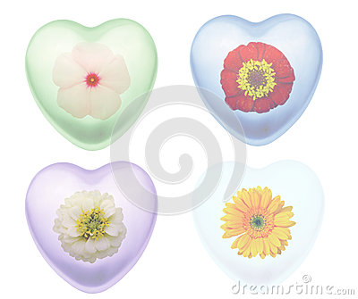 Flowers in heart shapes