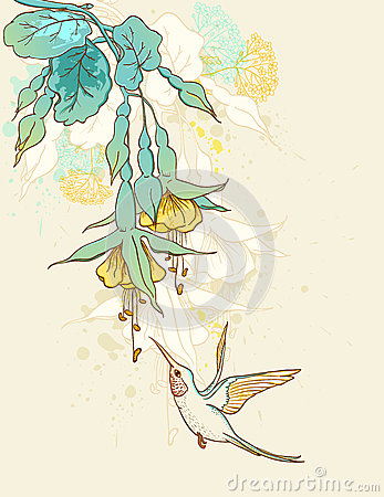 Flowers and humming-bird