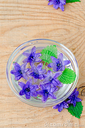 Flowers hyacinth in a bowl with water