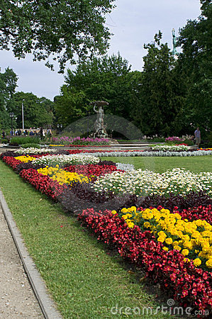 Free Flowers In City Park In Centre Of Riga Stock Image - 24173981
