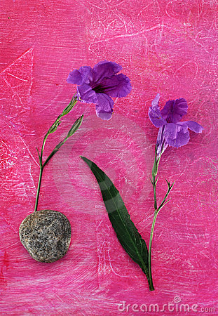 Flowers, Leaf, Stone.
