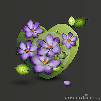 Flowers of a lilac in the form of a heart. Valenti