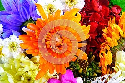 Flowers mix