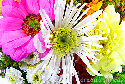 Flowers mix