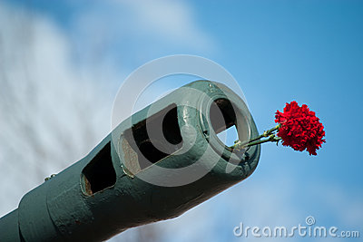 Flowers in muzzle