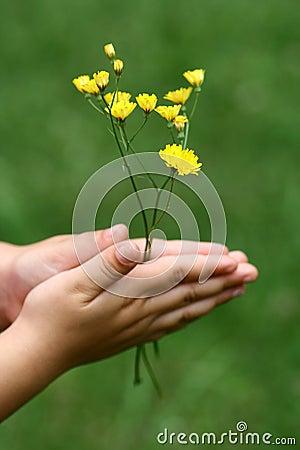 Girl holding Flowers