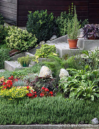 Flowers and perennial plants front of the house