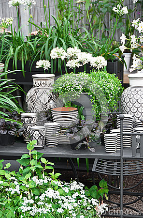 Flowers, plants and ceramics in a flower shop