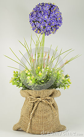 Free Flowers Plastic. Stock Image - 33981491