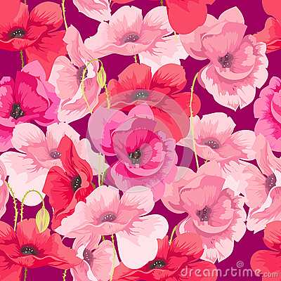 Free Flowers Poppies Stock Images - 27803604