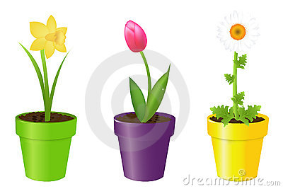 Flowers In Pots. Vector Royalty Free Stock Images - Image: 17615499