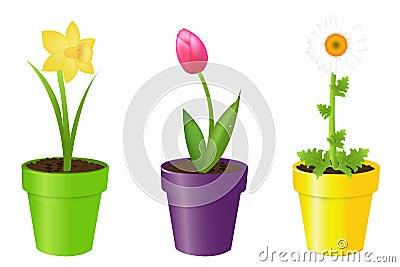 Flowers In Pots. Vector