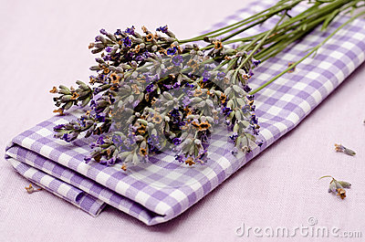 Flowers of purple lavender