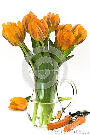 Flowers and scissors