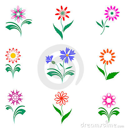 Flowers set, design elements.