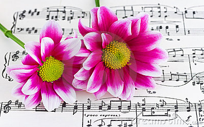 Flowers on sheet music