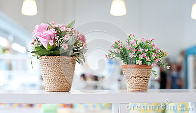 Flowers on the shelves