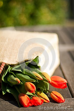 Flowers in a shopping bag