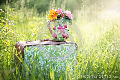 Flowers On Suitcase In Countryside Free Public Domain Cc0 Image