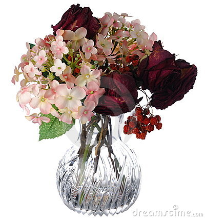 Flowers in vase on white