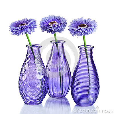 Flowers in vases on white