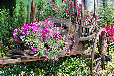 Flowers on the wagon