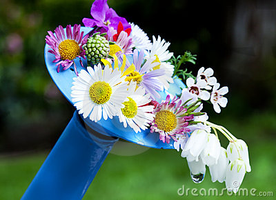 Flowers on watering can