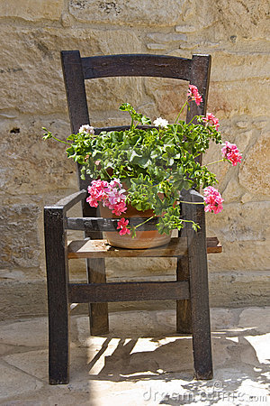 Flowers on a wooden chair