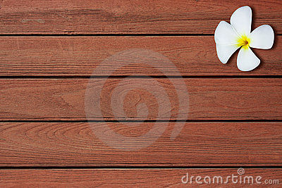 Flowers on the wooden floor Editorial Stock Image