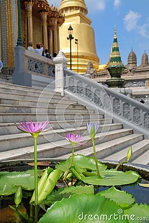 Flowerses fnd temple