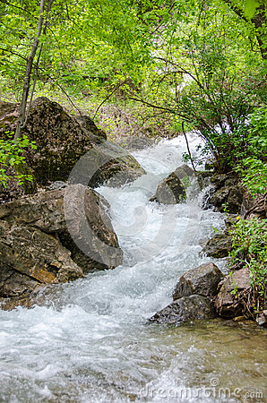 Free Flowing Mountain Water Royalty Free Stock Photo - 43257055