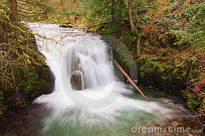 Flowing water at Multnomah Falls.