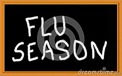 Flu seasjon