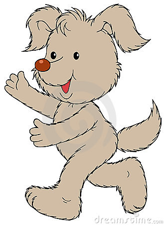 Fluffy dog running