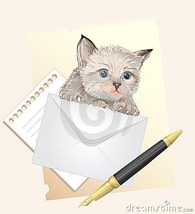 Fluffy kitten with envelope.