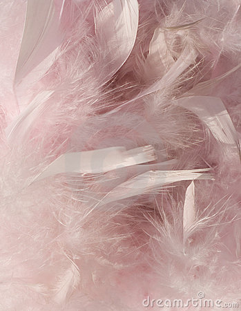 Fluffy pink feather background with corner