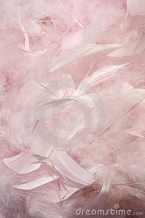Free Fluffy Pink Feathers Stock Photos - 13469003