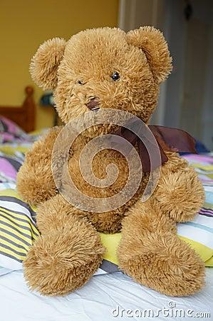 Fluffy teddybear