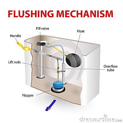Flushing Mechanism Flush Toilet Stock Photos Image 33200443
