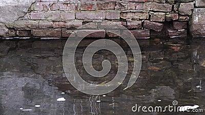 Flusso canale città video d archivio